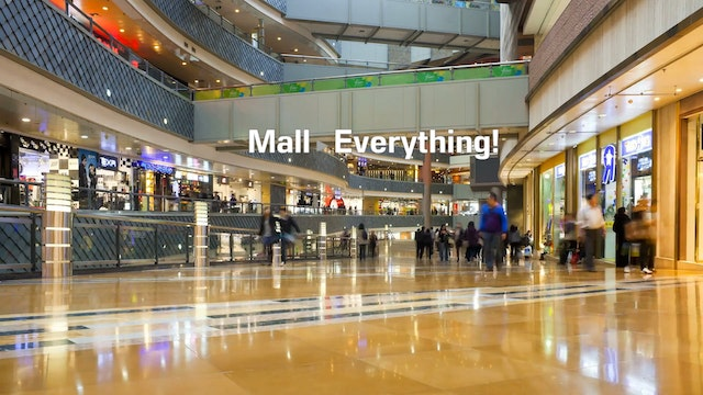 A1.L12.V1 Places Things you can buy t...