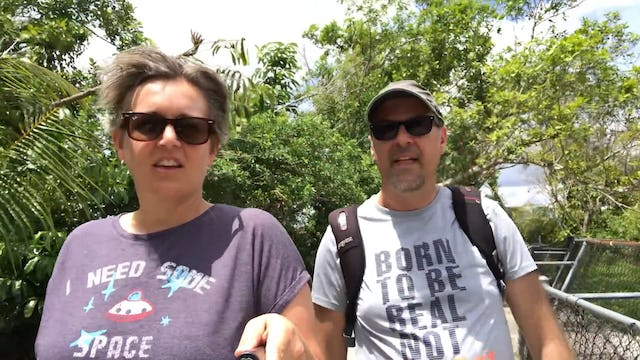Travel: A Walk in the Park in the Everglades