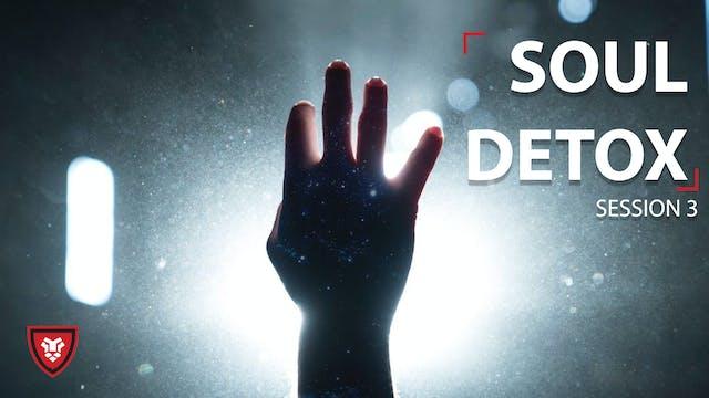 Soul Detox 3 - The Tortured Soul