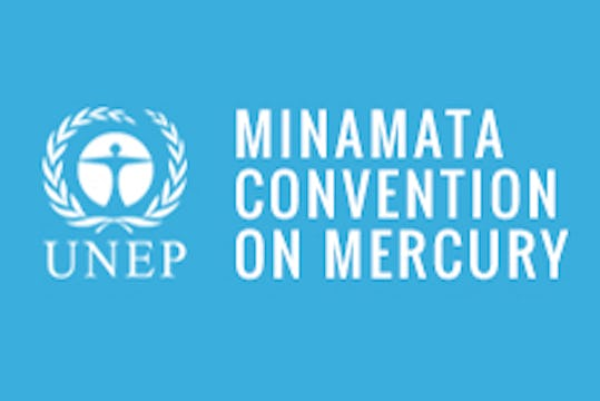 Dr. Lisa Matriste discusses the Minamata Convention on Mercury
