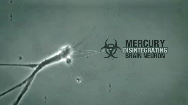 Mercury & Alzheimer's Disease