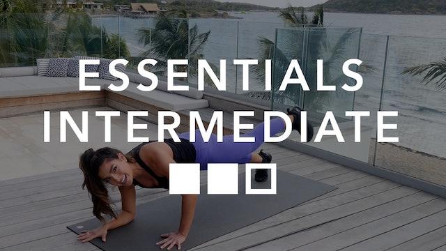 Essentials Intermediate