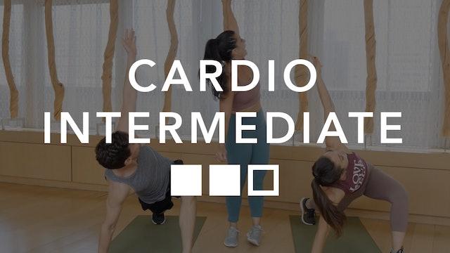 Cardio Intermediate
