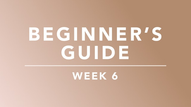 Beginner's Guide: Week 6 Plan