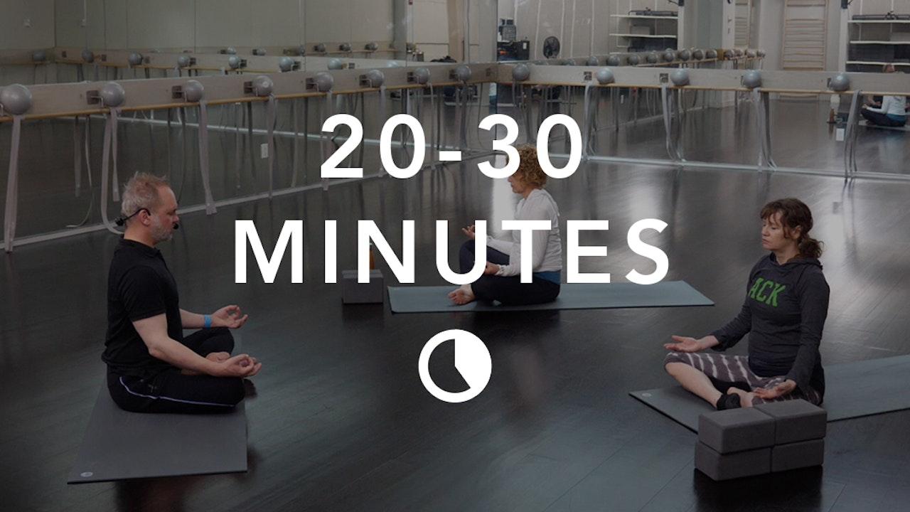 Meditation in 20-30 Minutes
