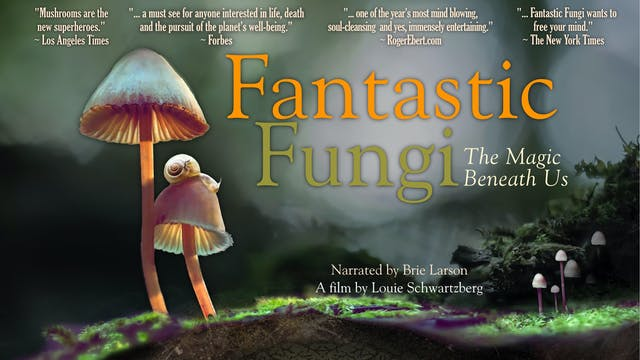 Fantastic Fungi - Hebrew