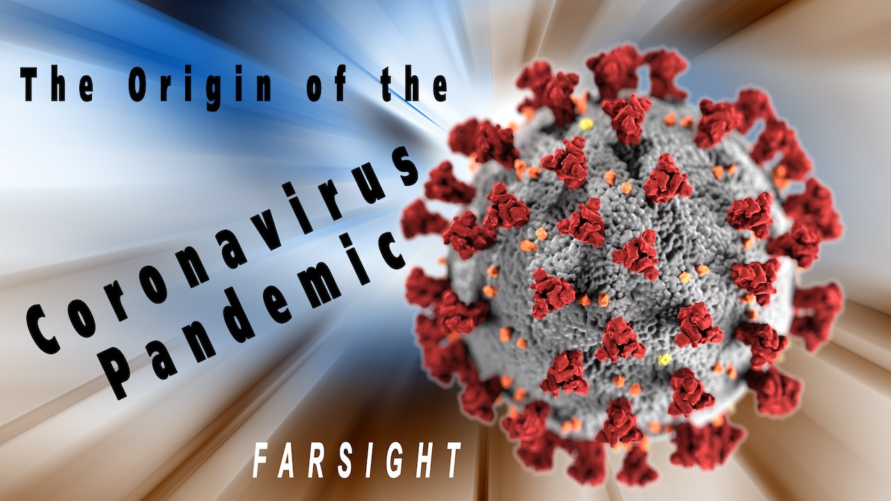 Origin of the Coronavirus Pandemic