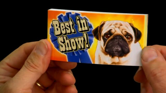 Best In Show 720
