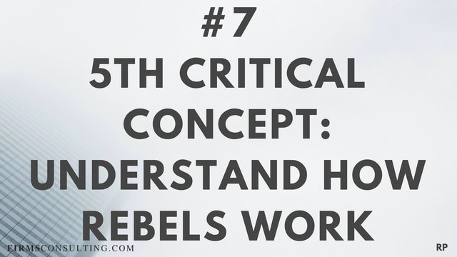 7 RP 5th Insight. Understand how rebels work