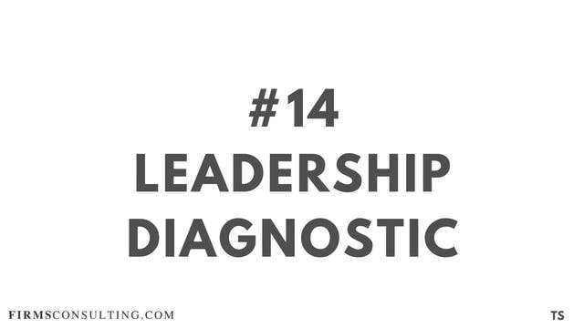 14 TS 13 Leadership diagnostic