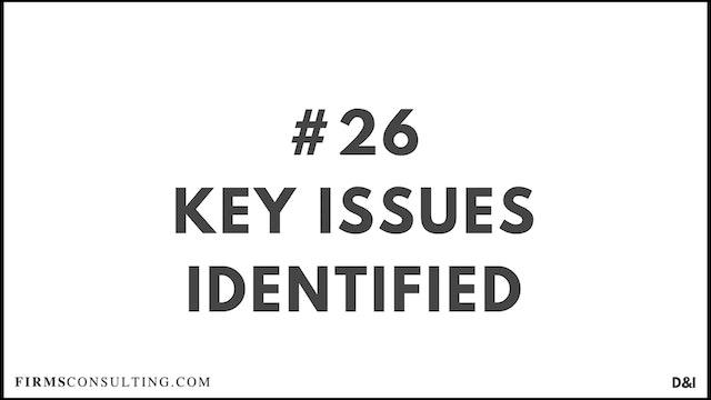 26 D&IT Key issues identified