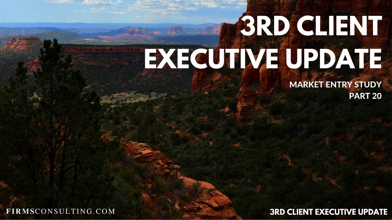 US P20 3rd Client Executive Update