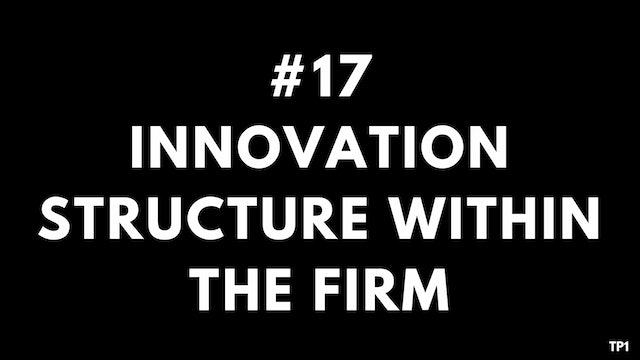 17 TP1 Innovation structure within the firm