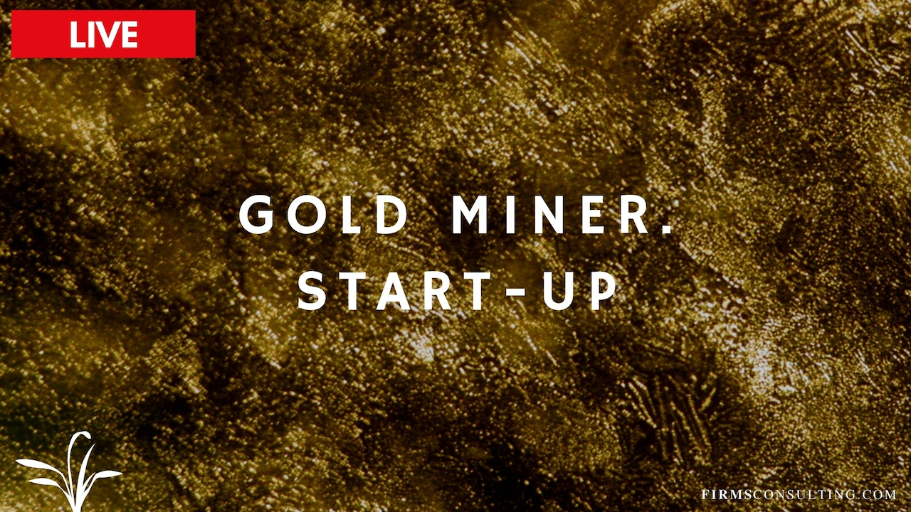 The Digital Gold Miner. Start Up