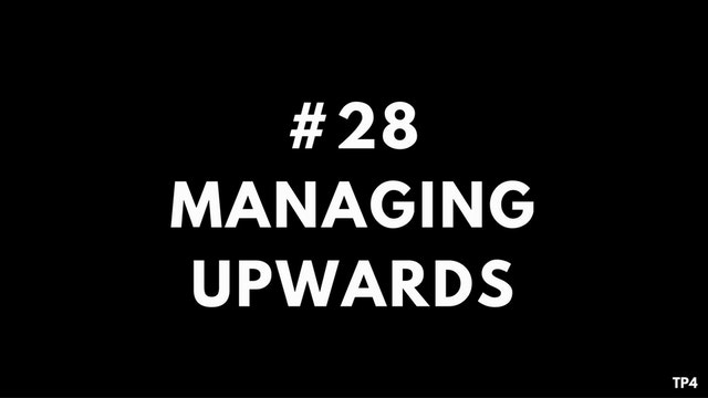 28 T24 TP4 Managing upwards