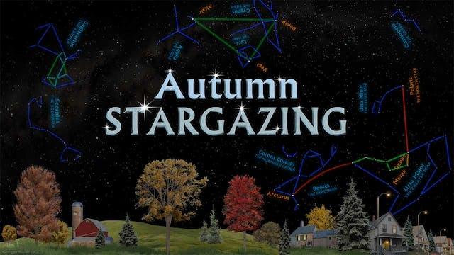 SSG Autumn Mini - prewarped