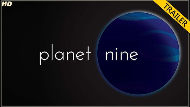 PLN trailer - HD