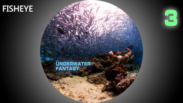 UWF3 show - fisheye