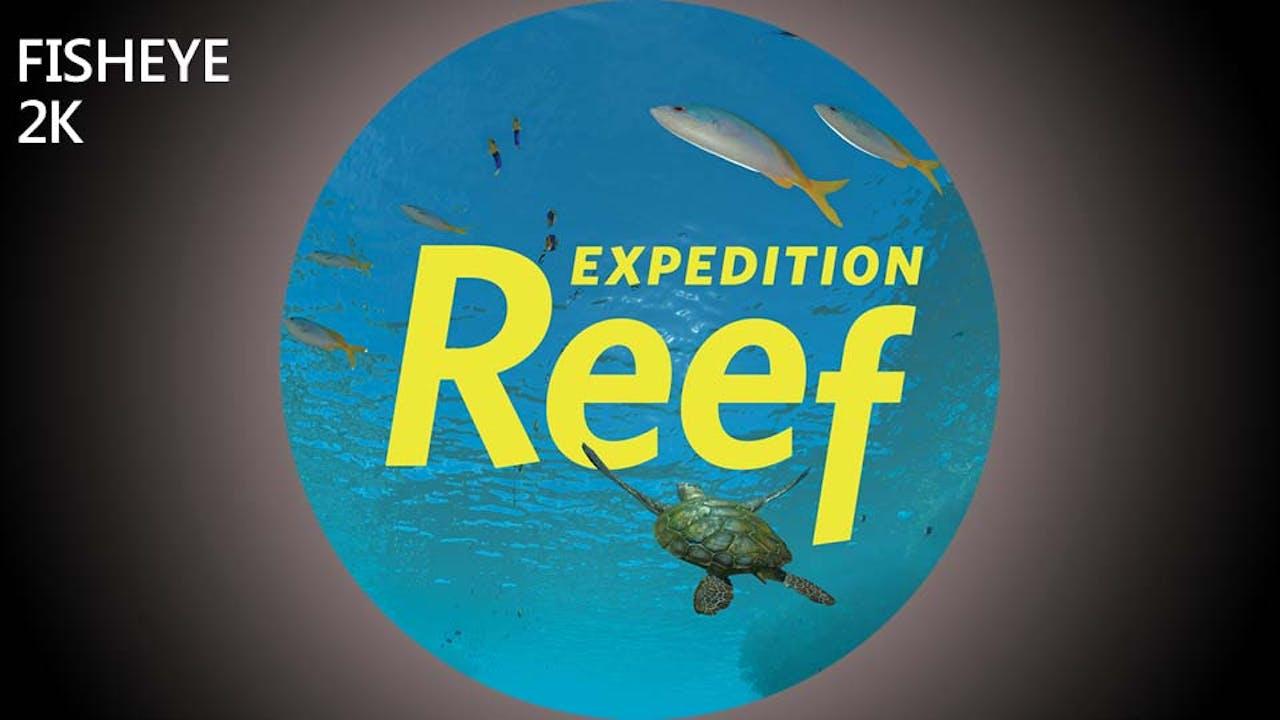 Expedition Reef - 2k - week