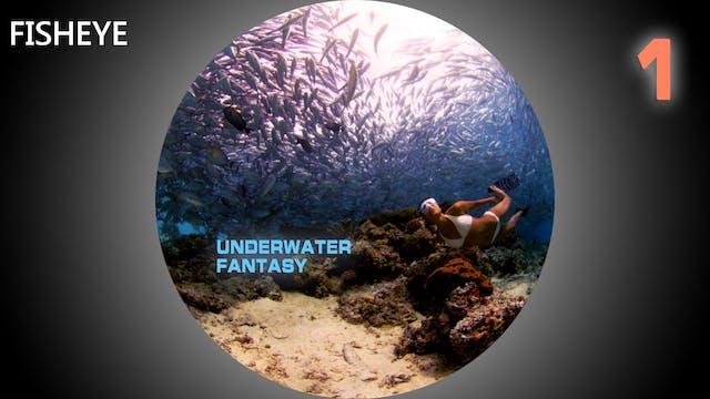 UWF1 show - fisheye