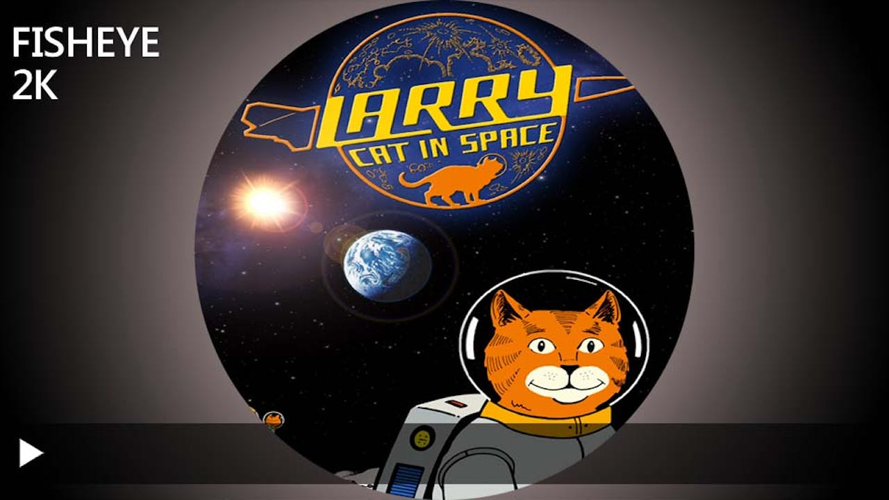 Larry Cat In Space - 2k - week