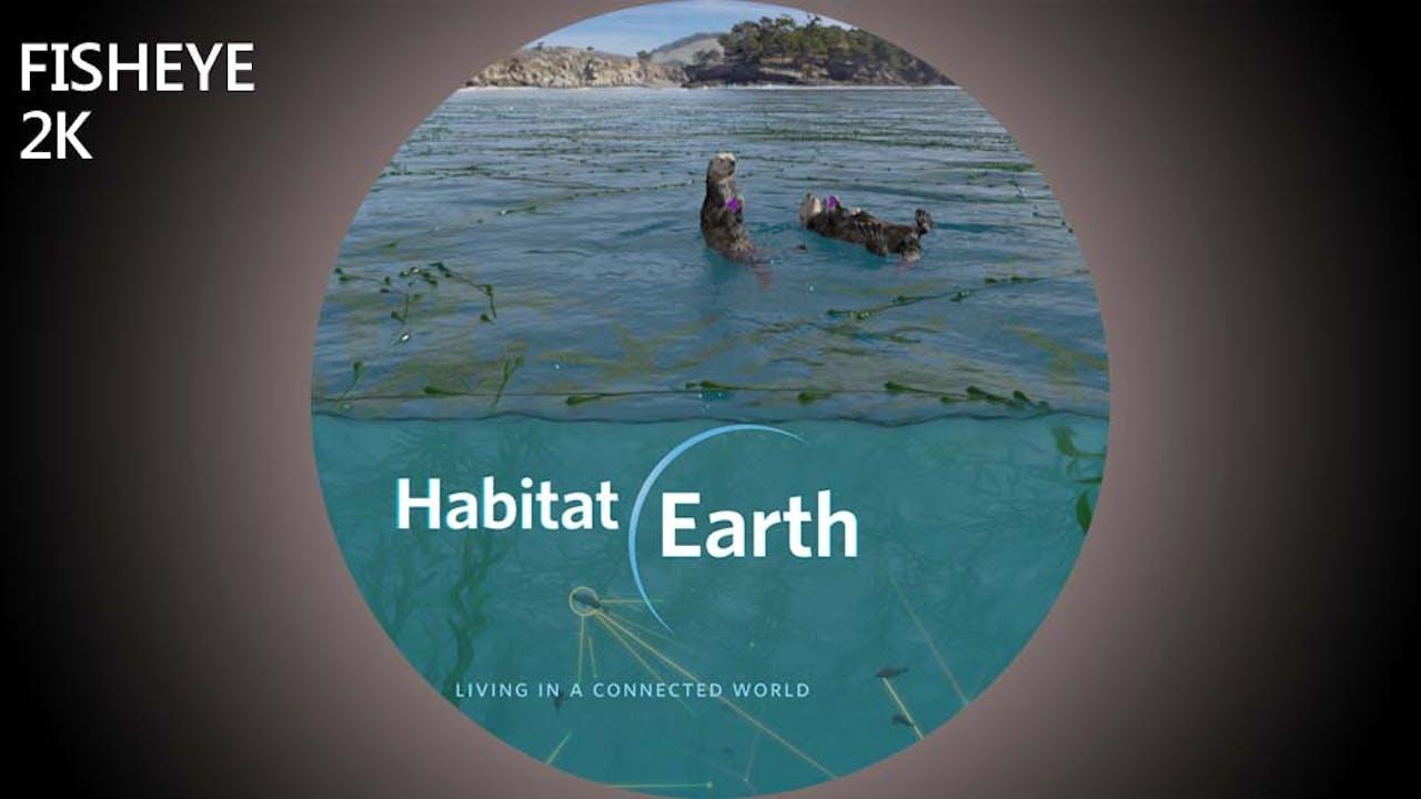 Habitat Earth - 2k - week