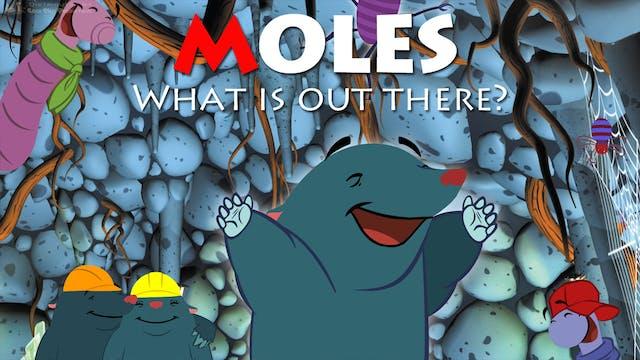 MOLES show - prewarped