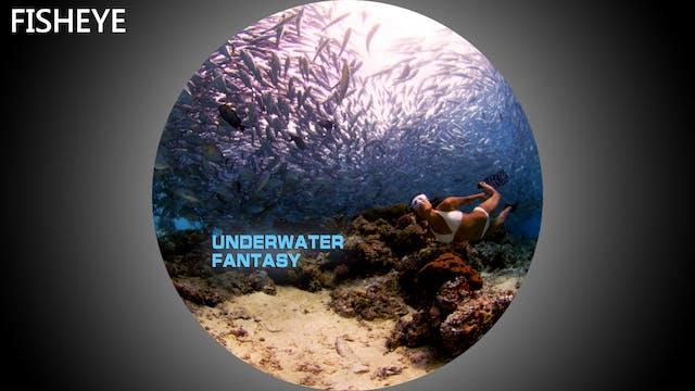 UWF show - fisheye