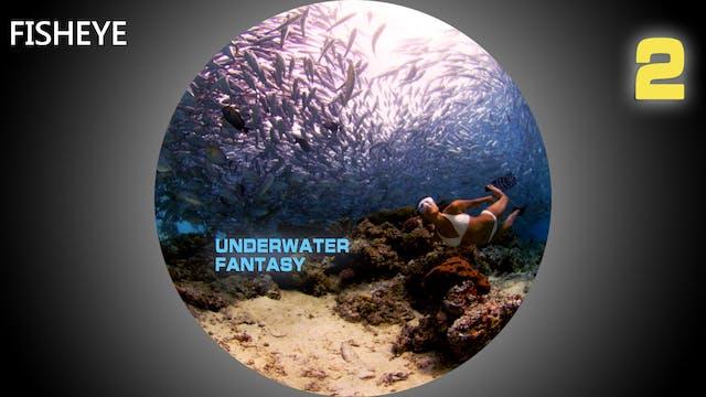 UWF2 show - fisheye