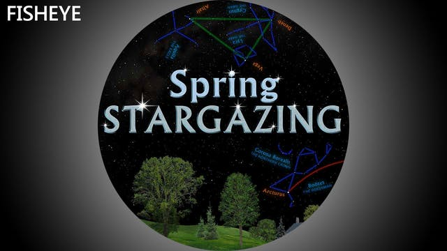 SSG Spring - fisheye