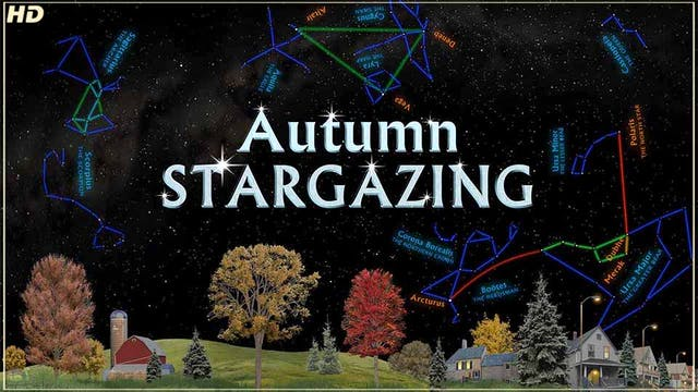 SSG autumn - HD