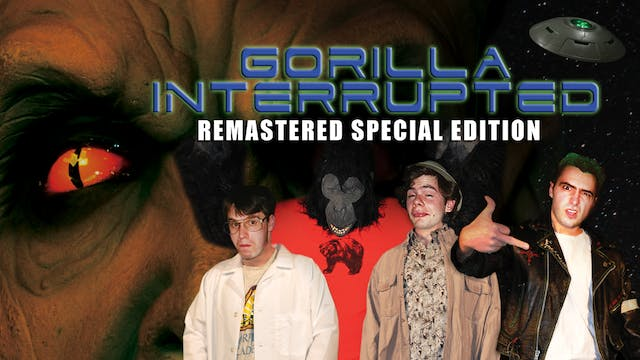 Gorilla Interrupted