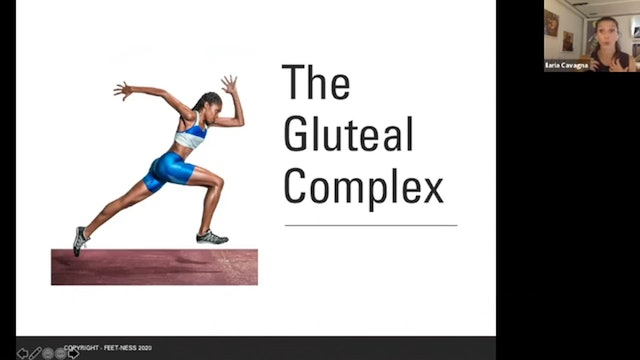 ZOOM Call - The Gluteal Complex