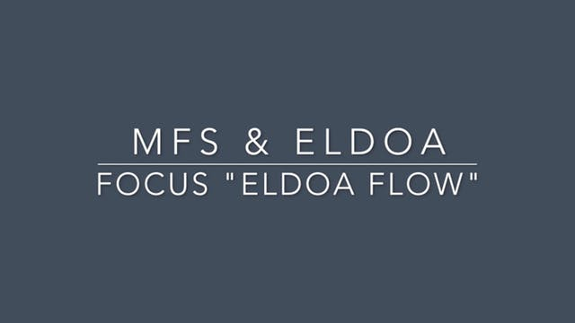 #7 MFS & ELDOA (ELDOA Flow)