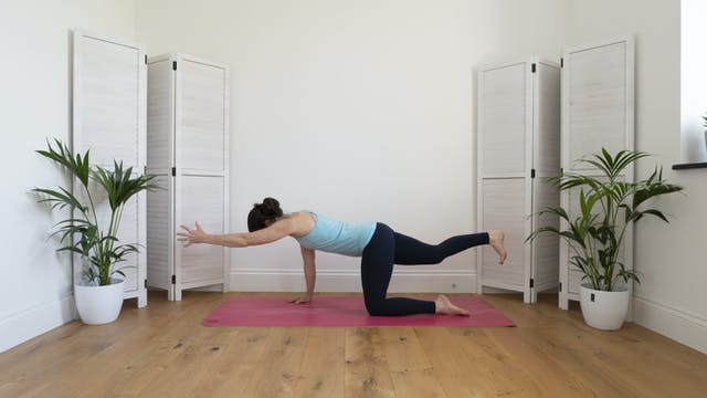 Core & hip stability