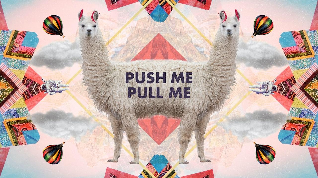 Push Me, Pull Me