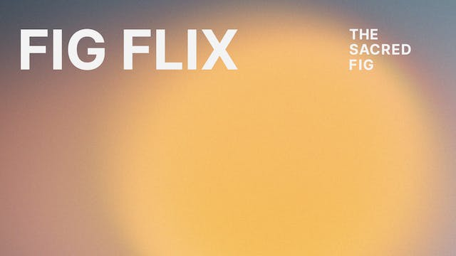 FigFlix monthly subscription, w/ 14 day free trial
