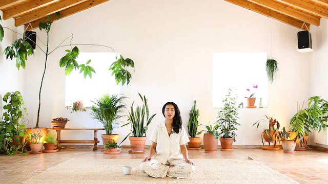Guided Meditation FOUR