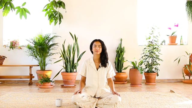 Guided Meditation THREE
