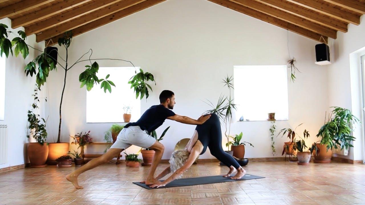 Surya Namaskar B   Yoga   FigFlix