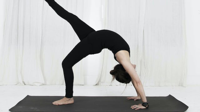 "29. Day 9 - Practicing the ""Wheels"" in your Backbend"