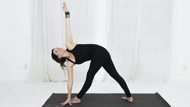15. Day 4 -Practice Standing Twists: Twisted Triangle