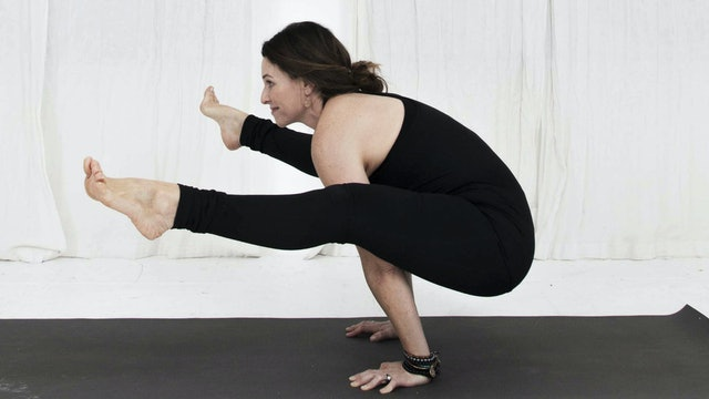34. Day 11 - Practice Core Work Safely, Set up for Bakasana and Open the Hips Safely