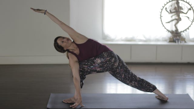 Parivrtta Parsvakonasana - Twisted Side-Angle