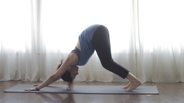 Sun Salute A Tutorial Downward Dog Modification