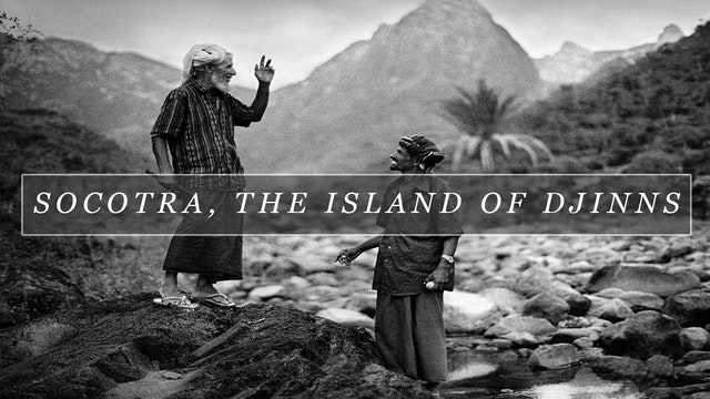 FLMTQ Release 21 - Socotra, the Island of Djinns