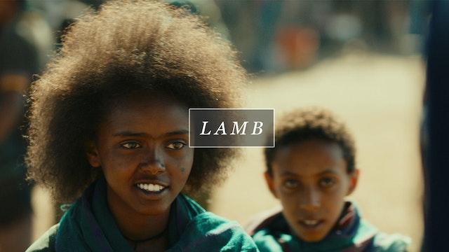 FLMTQ Release 17 - Lamb