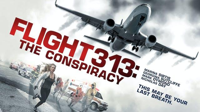 Flight 313: The Conspiracy