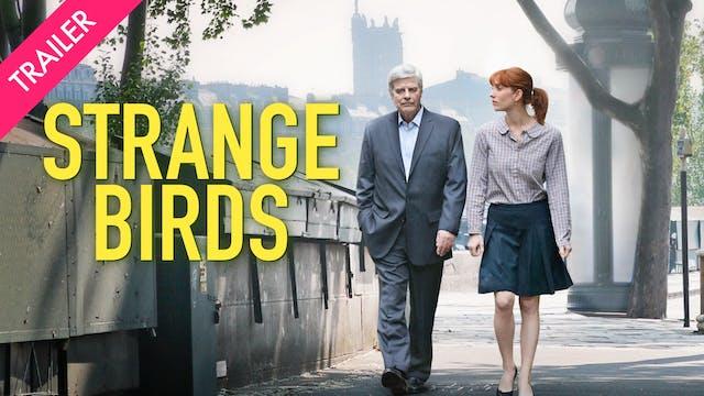 Strange Birds - Trailer