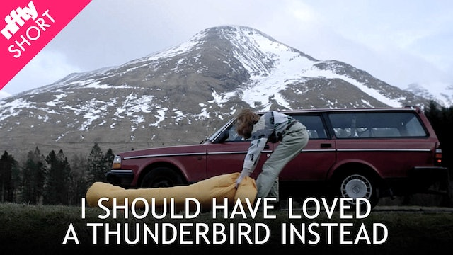 I Should Have Loved a Thunderbird Instead